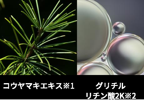 コウヤマキエキス グリチルリチン酸2K